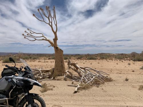 MWZ-Motorradtour-Namibia-005