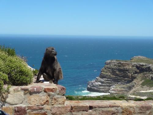Motorradtour-Küstentour-Südafrika010