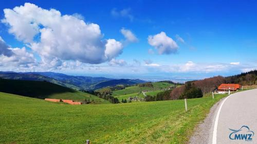 MWZ-Training-on-Tour-Schwarzwald
